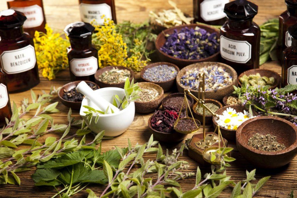 Jarní bylinná očistná kúra pro vaše vlasy, tělo i pokožku