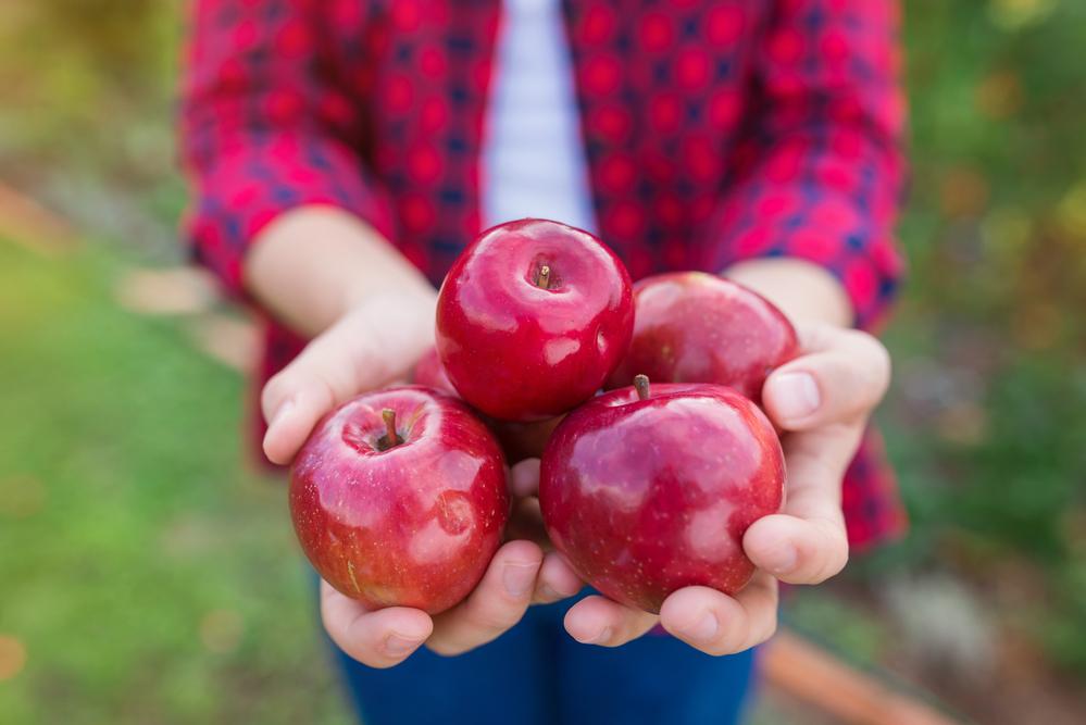 Proč nevyřazovat jablka z jídelníčku